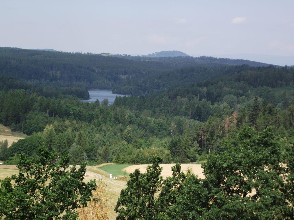 Zdejší krajinu tvoří hlavně lesy