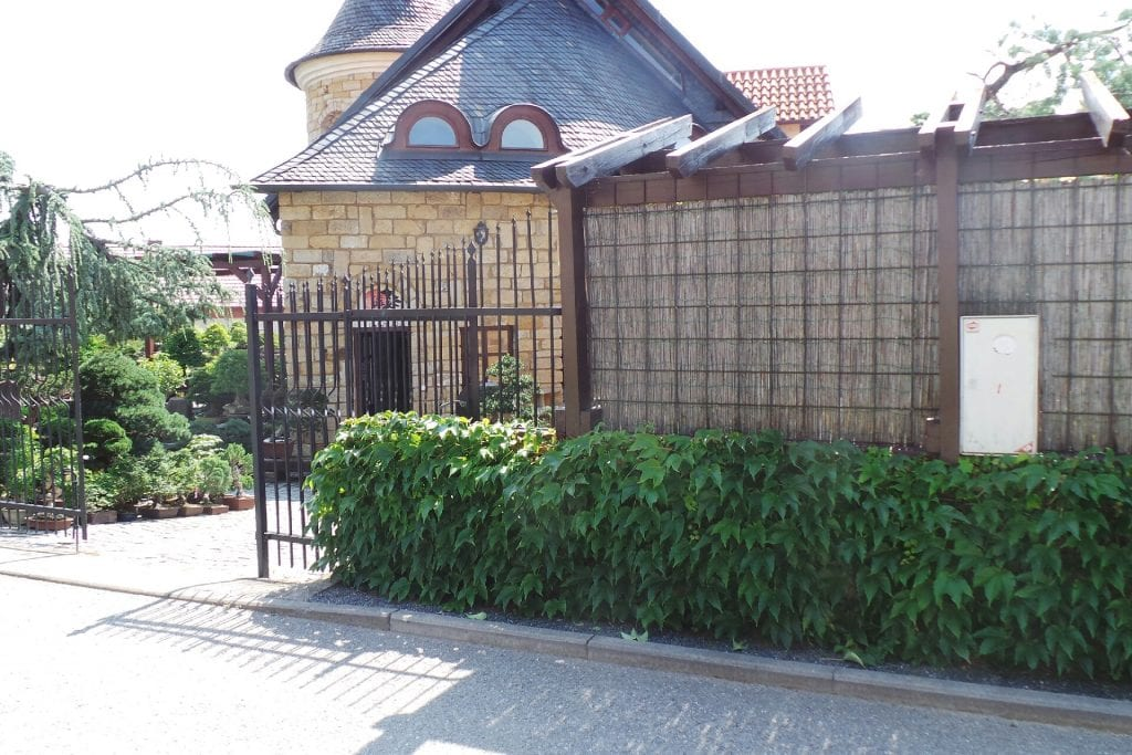 Vchod do Bonsai museum Isabelia nepřehlédnete.