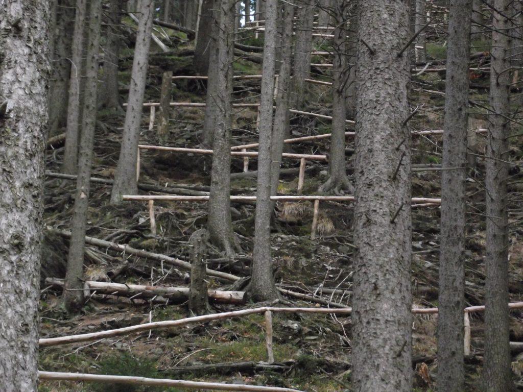 Stylově upravená stezka je součástí celého vandru.