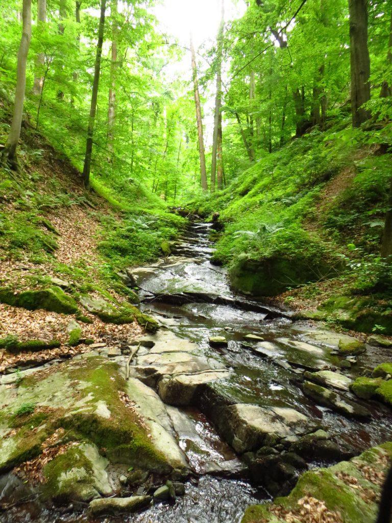 Do řeky Oslava a Jihlava se vlévá nejeden divoký vodopád.