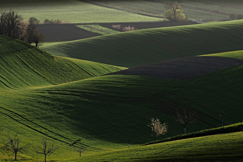Nádherně kopcovitá krajina. Foto: Jiří Kolbaba